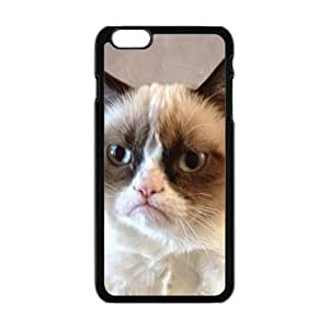 SKULL Cat Design Fashion Comstom Plastic case cover For Iphone 6 Plus
