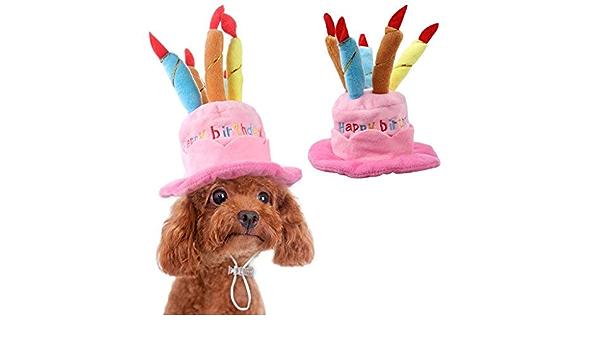 TickTocking Sombrero de cumpleaños para Mascota, Lindo ...