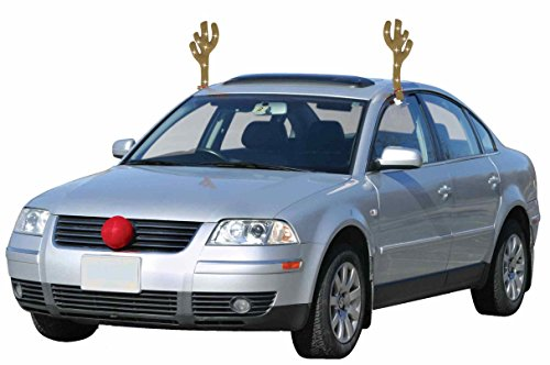 (Mystic Industries 88025 Lighted LED Reindeer Car)