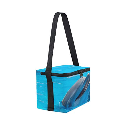 Cooler for Bag Lunch Strap Dolphins Shoulder Picnic Lunchbox Pool The Swimming waX4XqH