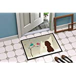 Caroline's Treasures BB2535JMAT Between Friends Irish Water Spaniel Indoor or Outdoor Mat 24x36, 24H X 36W, Multicolor 4
