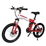 LETFF Adult Folding Bike 20 Inches, 24 Speed Double Shock Absorption, Male And Female Students Mountain Bike,Red