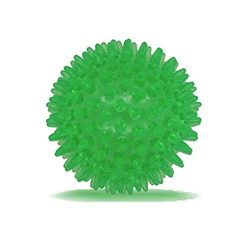 Dilight Green Large Squeaker Ball Dog Toy, 4