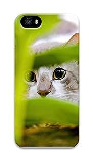 iPhone 5 5S Case Hiding Cat 3D Custom iPhone 5 5S Case Cover