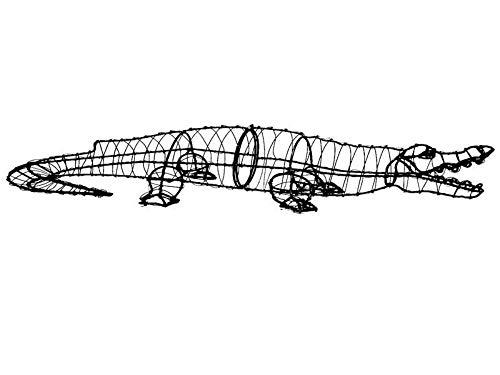 Alligator 9