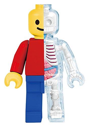 4D Master Brick Man Funny Anatomy By Jason Freeny