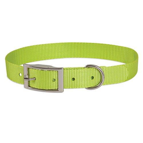 Petmate Nylon Custom-Fit Dog Collar, Small 3/8