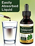 Super Concentrated Goldenseal Liquid Extract 1 fl