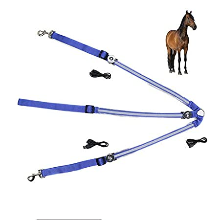 UTOPIAY Arnés para Caballo con Luces LED Recargable Mediante USB ...