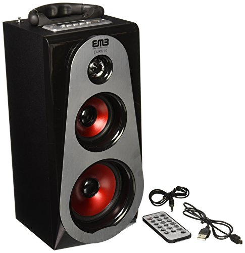 EMB PORTABLE BLUETOOTH BOOM BOX! SD/MP3/USB/PC Rechargeable EURO10