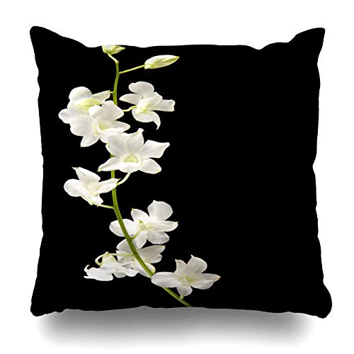 Pakaku Decorative Pillows Case Throw Pillows Covers for Couch Indoor Bed 18 x 18 Inch, Stalks White Orchid Bud Black Home Sofa Cushion Cover Pillowcase Gift Bed Car Living Home ()