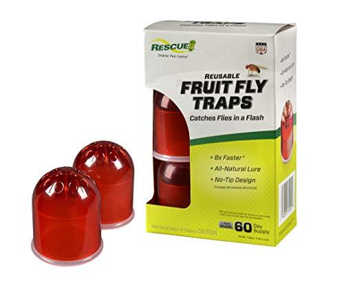 RESCUE Indoor Non-Toxic Reusable Fruit Fly Trap