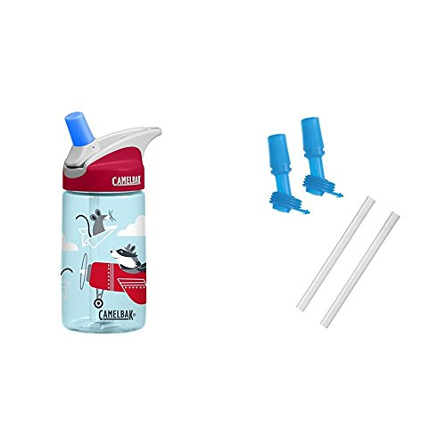 Airplane Bandits Bottle with 2 Bite Valves/2 Straws