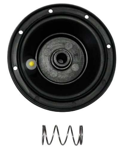 Rain Bird DRKJTVCP Replacement Diaphragm Kit for 3/4