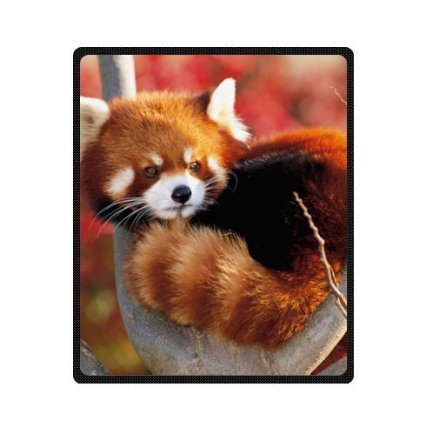Custom Special Design funny cute red panda Fleece Blankets 50 x 60 inches (Medium)