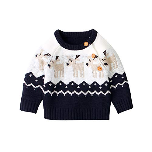 Toddler Baby Boy Girl Christmas Clothes Deer Floral Long Sleeve Button Pullover Sweater Tops Xmas Outfit