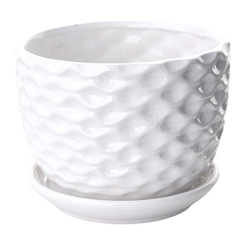 Berry President Golf Ball Inspired White Small Freestanding Ceramic Decor Plant Display Vase Pots