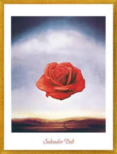 Amazon.com: 1art1® Salvador Dali Poster Art Print and Frame (Plastic) - Rose Meditative (32 x 24 inches): Posters & Prints