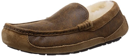 UGG Men's Ascot Bomber Bomber Jacket Chestnut Twinface Loafer 8 D (M) (Slipper Ascot)