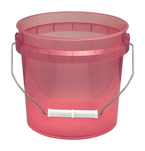 Leaktite Red Transparent Paint Pail 1 Gl by Leaktite