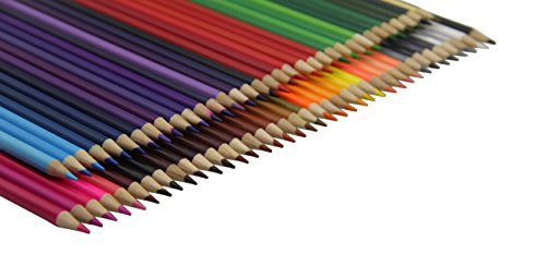 Everyday Essentials Premium Colored Pencils - Set of 72 Individual Colors with Roll up Pouch Canvas Pen Bag (72-Color) by GLTECK (Image #4)