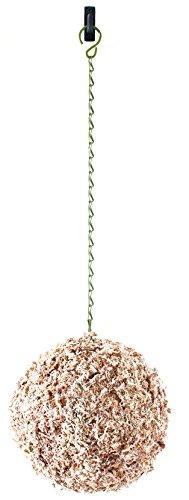 (SuperMoss (22374) Sphagnum Moss Living Wreath 13