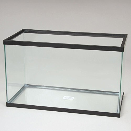 Aquarium Tank, Glass, 5-1/2 ()