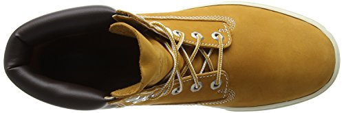 Timberland 2 0 Cupsole 6In, Baskets da Uomo marrone