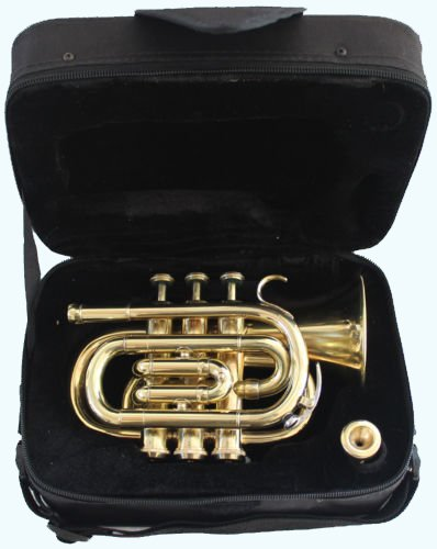 Global Art World Top Grade Pocket Trumpet With Brass Finish And A Mouthpeice MI 046 by Global Art World