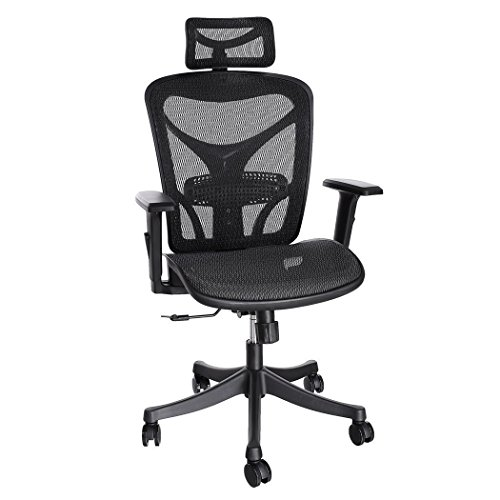 ANCHEER Ergonomic Office Chair, High Back Mesh Office Chair with Adjustable Lumbar Support,Armrest and Headrest ( BIMFA Certified ) (Black)