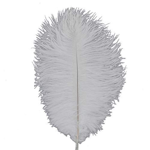 Shekyeon White 10-12inch 25-30cm Ostrich Feather Home Decoration