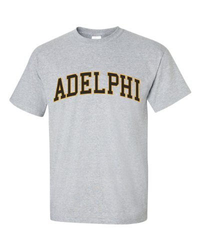 NCAA Adelphi Panthers Men's T-Shirt, Large, Gray