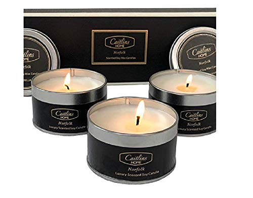 Scented Candles Aromatherapy Soy Wax Candle Gift Set Vanilla, White Lavender, Eucalyptus Scents with Essential Oils -