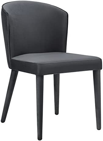 TOV Furniture Metropilitan Collection Velvet Diningroom Accent Chair