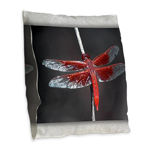 - Burlap Throw Pillow Red Flame Dragonfly