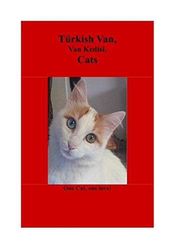 (Türkish Van, Van Kedisi, Cats)