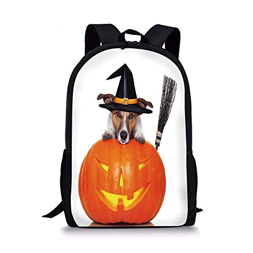 School Bags Halloween,Witch Dog with a Broomstick on Large Pumpkin Fun Humorous Hilarious Animal Print,Multicolor for Boys&Girls Mens Sport Daypack