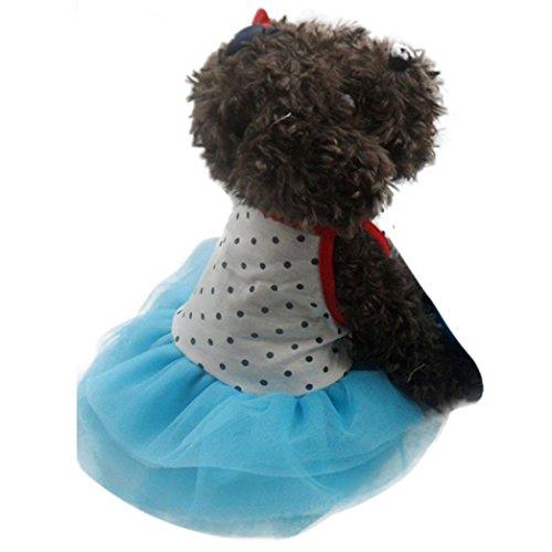 HP95(TM) Pet Small Dog Cat Polka Dot Dress, Lace Skirt, Dog Princess Clothes Costume (S, -