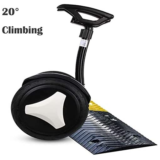 ZEH 10 Pouces Intelligent Hoverboard avec Foot Pole, Auto-Balacing Scooter électrique for Adultes et Enfants, Balancing Voiture, Bluetooth/LED Lights/Charger 120KG FACAI (Color : White, Size : 54V)