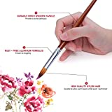 Artist Watercolor Paint Brushes Set 13pcs - Round