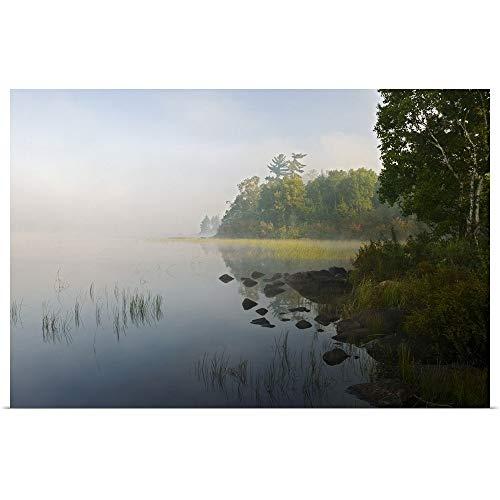 GREATBIGCANVAS Poster Print Entitled Shoreline Trees and Grasses Along Nina Moose Lake, Fog, Boundary Waters Canoe Area Wilderness, Minnesota by 18