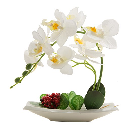 Phaleanopsis Orchid Silk Flower Arrangement with White Vase Decorative (White)