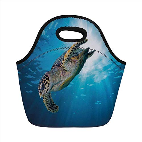 - Portable Bento Lunch Bag,Turtle,Hawksbill Sea Turtle Dive Deep Into the Blue Ocean Against Sun Rays,Yellow Brown Aqua Blue,for Kids Adult Thermal Insulated Tote Bags