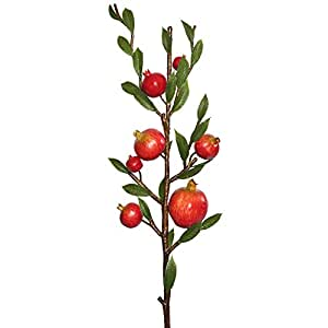 Vickerman FK171802 Pomegranate Fruit Spray