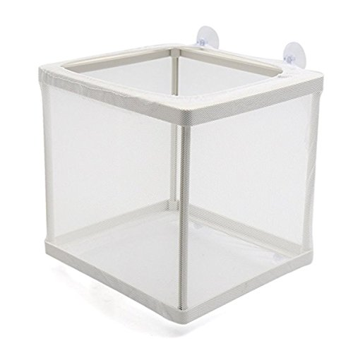 XMHF White Nylon Mesh Fish Fry Hatchery Breeder Box Separation Net (Fish Tank Fry Holder)