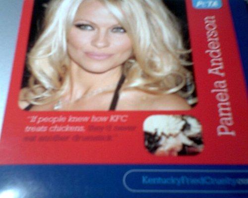 Peta Pamela Anderson DVD ()