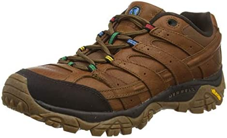 Merrell Moab 2 Earth Day Hiking Shoe – Men s
