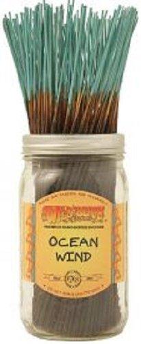ocean breeze incense - 7