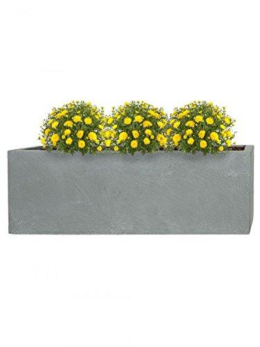 Pflanzwerk® Fioriera Vaso per Fiori Portavaso Grigio 23x23x23cm *Resistente al Gelo* *Protezione UV* *Europea di qualità*