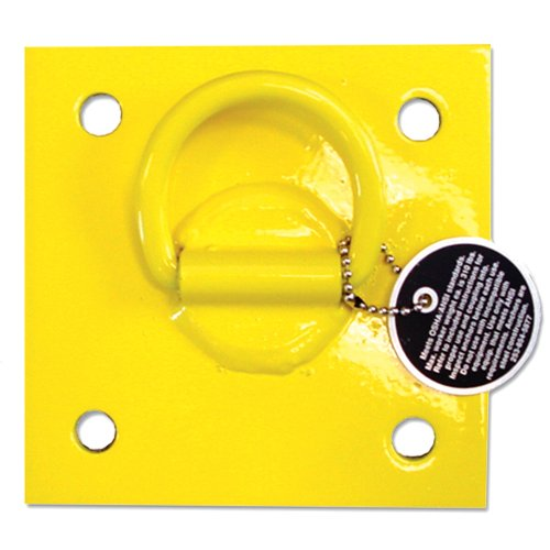 Guardian Fall Protection 00600 CB-1-B Bolt-On Wall Anchor 6-Inch by 6-Inch (Buildings Concrete Anchor)